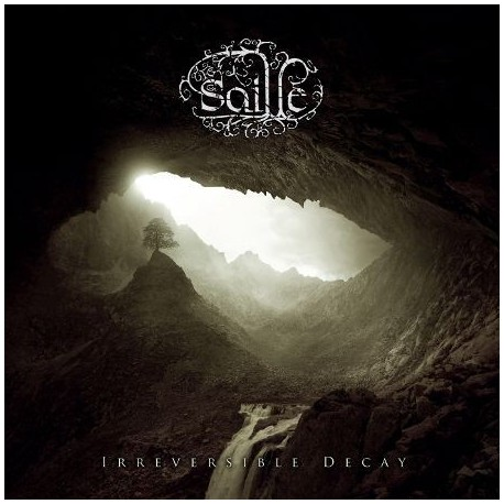 """SAILLE """"Irreversible decay"""""""