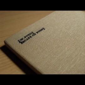 "JOHANN WOLFGANG POZOJ ""Escape of Pozoj"" (Lim. Ed.)"